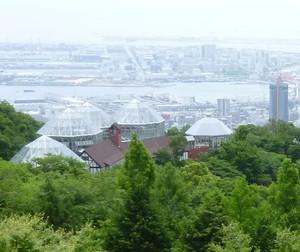 神戸布引ハーブ園 温室(グラスハウス) Herb07