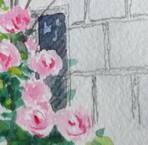 Rose_parts