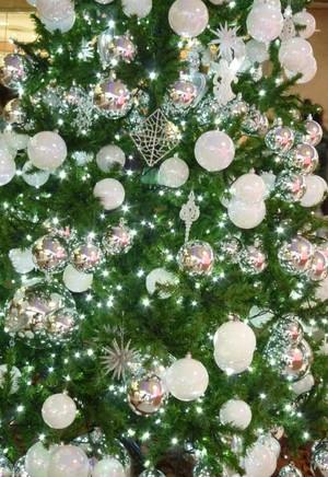 街角のクリスマスツリー 神戸・三ノ宮 さんちか入り口 Christmas03