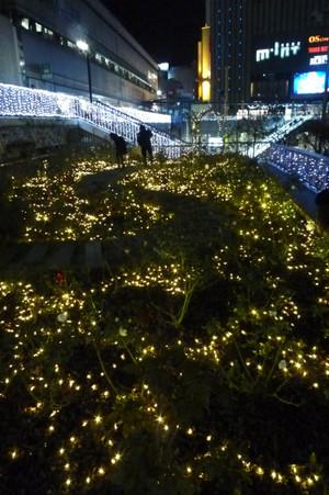 イルミネーション 三ノ宮駅前南側 Illumination_sannomiya02