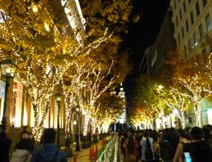 神戸 イルミネーション Luminarie_tree