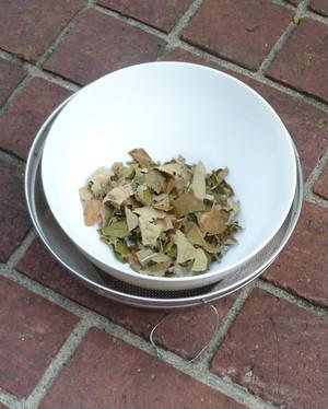 ビワの葉 茶 Tea04