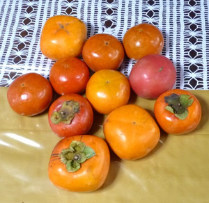 柿 Kaki