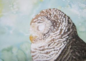 Owl_mask_03