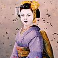 京都 祇園の舞妓さん