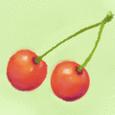 サクランボ Cherry