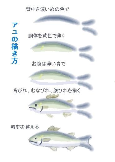アユ(鮎)の描き方 絵手紙風