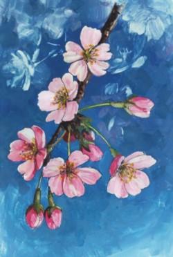 桜 完成 不透明水彩画