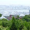神戸布引ハーブ園 温室  Herb07