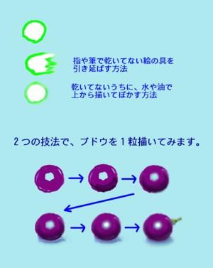 Grape_1_3
