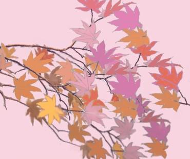 薄紫と橙で紅葉を描く 完成