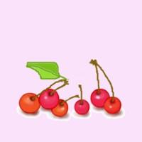 Cherry_jpg