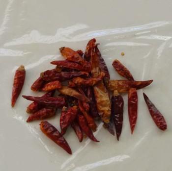 乾燥赤唐辛子 Dried_red_chili