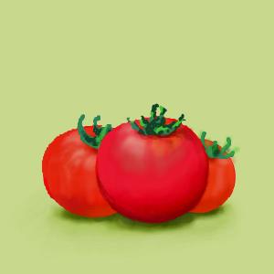 お絵描き トマト