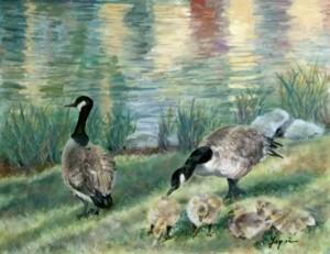 油彩(油絵) カナダガン Canada_goose