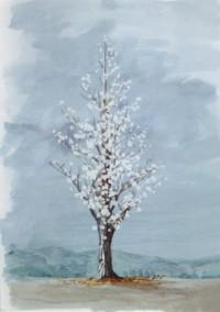 Tree16sml