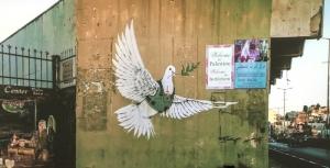 Img_0121_pigeon
